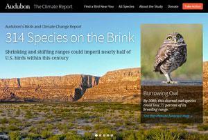 The-Audubon-Birds-&-Climate-Change-Report